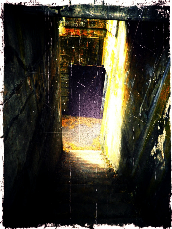 bunker2-sm
